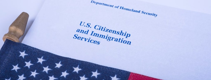 Assistance in uscis, petitions and applications